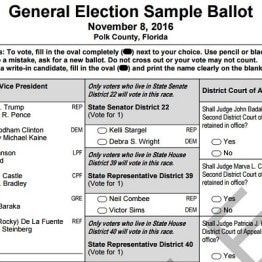 sample ballot - nov 4 elections